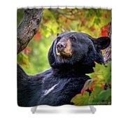 Fall Black Bear Shower Curtain