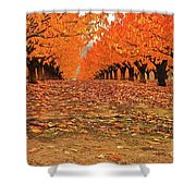 Fall Cherry Trees Shower Curtain