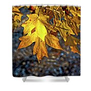 Fall Has Sprung Shower Curtain