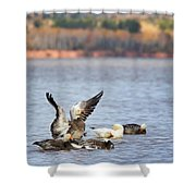Fall Migration At Whittlesey Creek Shower Curtain