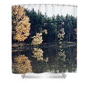 Fall Mirrors 2 Shower Curtain