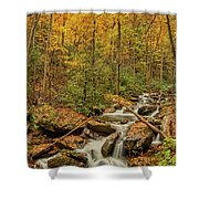 Fall Mountain Stream Shower Curtain by Meta Gatschenberger