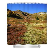 Fall On The Mountains Shower Curtain