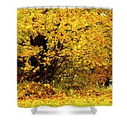 Fall To Grace Shower Curtain