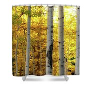 Fall's Visitation Shower Curtain by Rick Furmanek