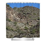 Family Of Saguaro Shower Curtain