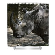 Fantastic Profile Of A Rhino With A Long Horn Shower Curtain
