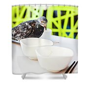 Fast Food Asian Pigeon Shower Curtain