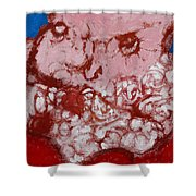 Father Christmas Shower Curtain