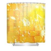 Fbrickwall Shower Curtain