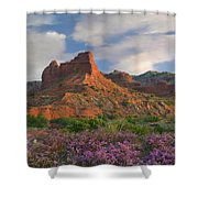 Feather Dalea, Caprock Canyons State Shower Curtain