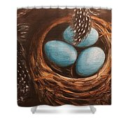 Feathers And Eggs Shower Curtain