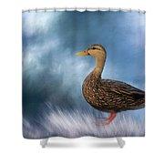 Female Mallard Duck Shower Curtain