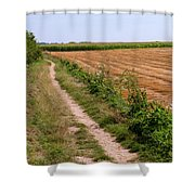 Field With Brown Cut Flax In Rows Drying In The Sun Shower Curtain