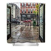 021 - First Snow Shower Curtain