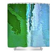 Fish2 Shower Curtain
