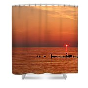 Fishy Geese Sunset Shower Curtain