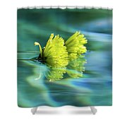 Floating Daisies 1 Shower Curtain by Dawn Richards