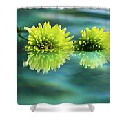 Floating Daisies 2 Shower Curtain by Dawn Richards
