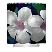 Floral Photo A030119 Shower Curtain