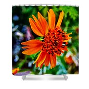 Floral Rush Hour Shower Curtain
