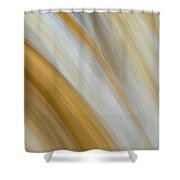 Flow Shower Curtain