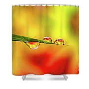 Flower In Water Droplet Shower Curtain