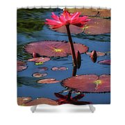 Flowering Beauty Iv Shower Curtain