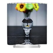 Flowers And Crystal Ball Shower Curtain