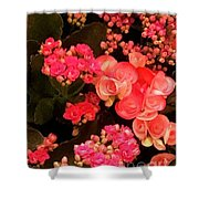 Flowers At Wynn Shower Curtain by Laurie Lundquist