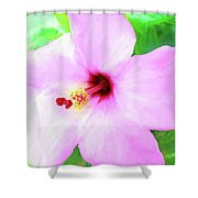Flowers Of Florida I Shower Curtain