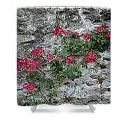 Flowers On Stone Shower Curtain