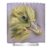 Fluffy Duckling Portrait Shower Curtain by MM Anderson