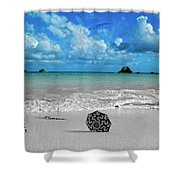 Fly Shower Curtain