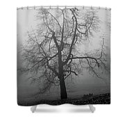 Foggy Tree In Black And White Shower Curtain by William Selander