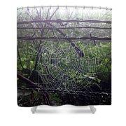 Foggy Web Shower Curtain