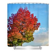 Foliage In Flanders Shower Curtain