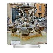 Fontana Delle Tartarughe Shower Curtain