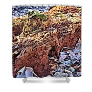 Forest Floor Fuel Shower Curtain