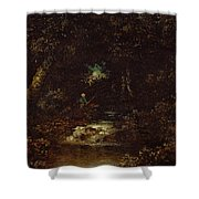 Forest Landscape  Shower Curtain