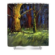 Forest Trees 1 Shower Curtain