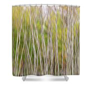 Forest Twist And Turns In Motion Shower Curtain