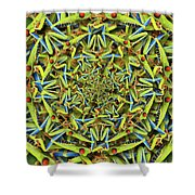 Forms Of Nature #14 Shower Curtain