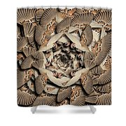 Forms Of Nature #16 Shower Curtain