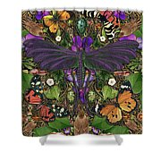 Forms Of Nature #3 Shower Curtain