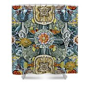 Forms Of Nature #6 Shower Curtain