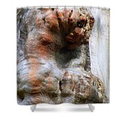 Foster Trees 3 Shower Curtain