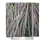 Foster Trees 6 Shower Curtain