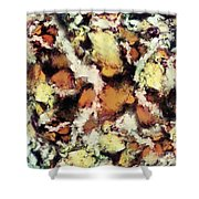 Fractured Viewpoint Shower Curtain