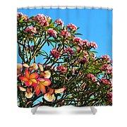 Frangipani Tree Shower Curtain